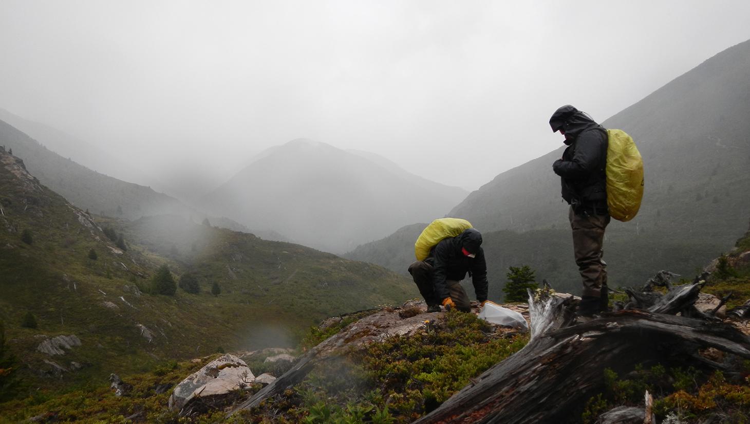 Frio Patagonico 1 (Est Huemules)